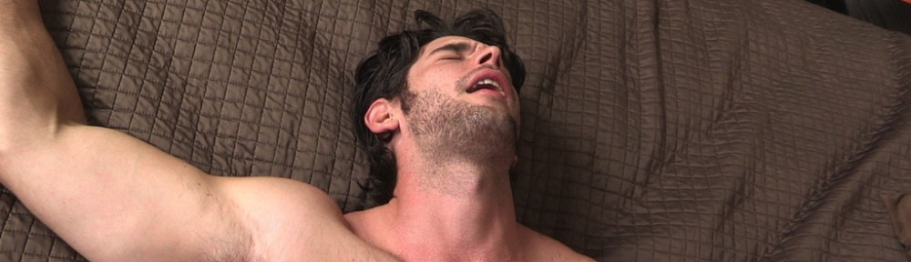 Hairy Guys In Gay Porn