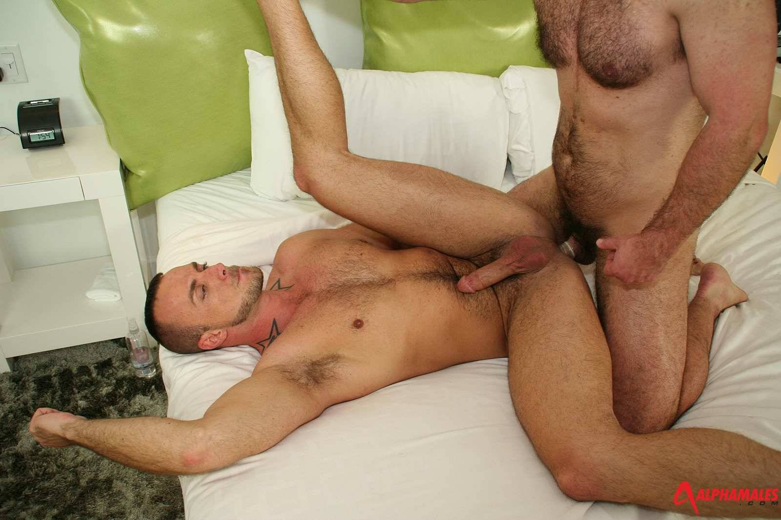 troy webb archives hairy guys in gay pornhairy guys in