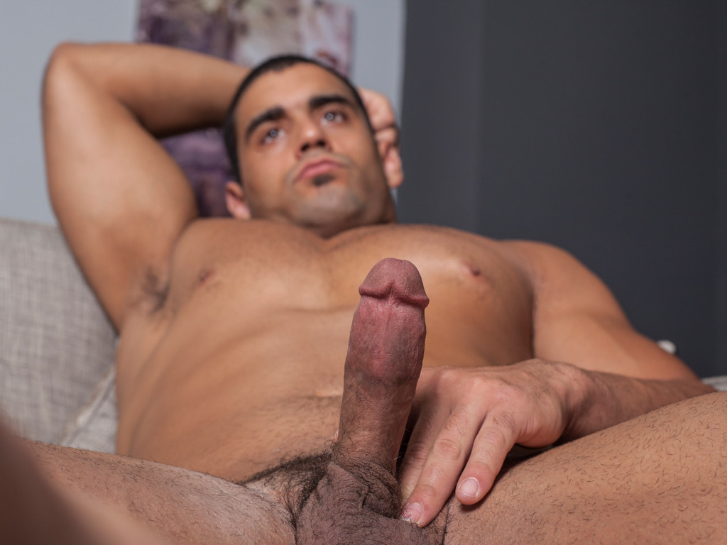 Hairy gay video