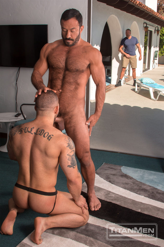 pure gay anal